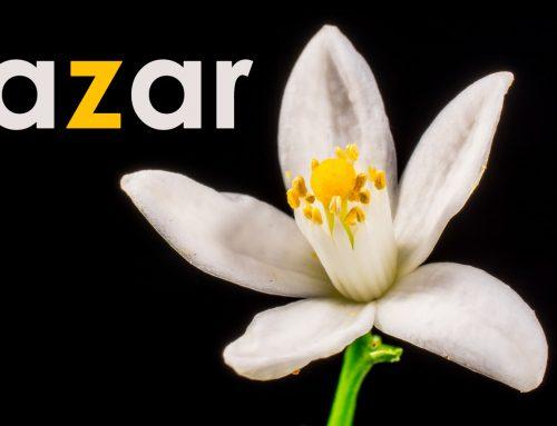 The Origin of the Word Azar in Spanish